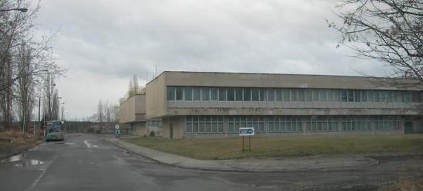 Lokal biurowy na sprzedaż 7600 m² Opolski Tułowice Porcelitowa - zdjęcie 1