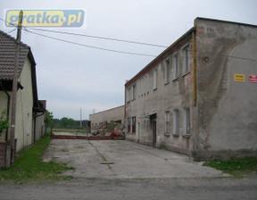 Obiekt na sprzedaż, Drzonów, 2400 m²