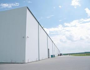 Magazyn, hala na sprzedaż, Kórnik Śremska, 69800 m²