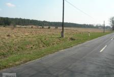 Działka na sprzedaż, Tarnowo Podgórne, 100000 m²