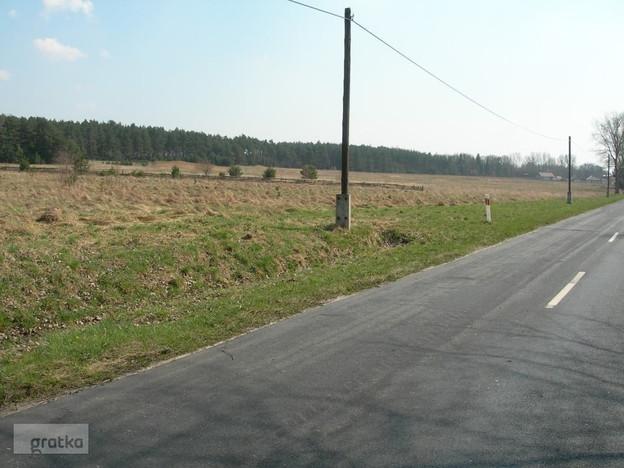 Morizon WP ogłoszenia | Działka na sprzedaż, Tarnowo Podgórne, 100000 m² | 1146