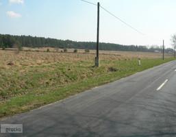Morizon WP ogłoszenia | Działka na sprzedaż, Tarnowo Podgórne, 20000 m² | 1154