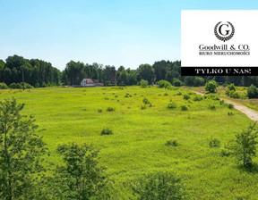 Działka na sprzedaż, Kawęczynek Prosta, 24640 m²