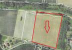 Handlowo-usługowy na sprzedaż, Pławniowice Gliwicka, 26831 m²   Morizon.pl   9692 nr2