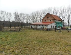 Dom na sprzedaż, Niewiesz-Kolonia, 480 m²