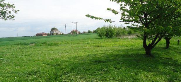 Działka na sprzedaż 1200 m² Lubelski Konopnica Pawlin - zdjęcie 1