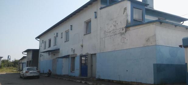 Magazyn, hala do wynajęcia 800 m² Działdowski (Pow.) Działdowo (Gm.) Uzdowo - zdjęcie 1