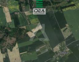 Morizon WP ogłoszenia | Działka na sprzedaż, Gliszcz, 2459 m² | 2275