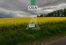 Działka na sprzedaż, Trzemiętowo, 1625 m²