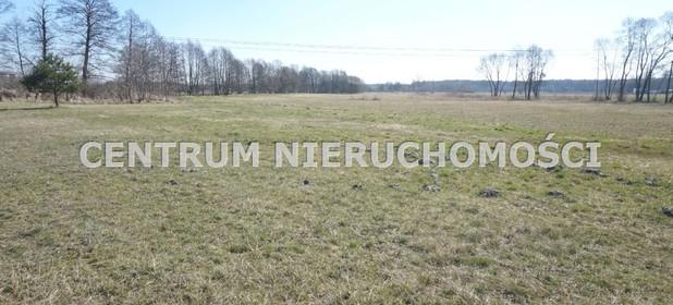 Działka na sprzedaż 25000 m² Bydgoski Nowa Wieś Wielka Prądocin - zdjęcie 1