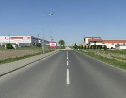 Morizon WP ogłoszenia | Działka na sprzedaż, Robakowo, 5000 m² | 2225