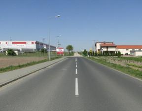 Działka na sprzedaż, Robakowo, 5000 m²