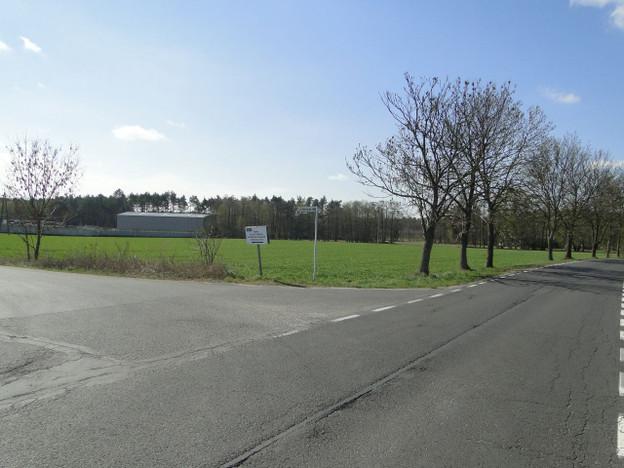 Morizon WP ogłoszenia | Działka na sprzedaż, Czołowo, 3000 m² | 2233