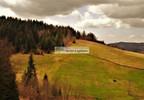 Działka na sprzedaż, Pewel Wielka, 30000 m² | Morizon.pl | 5879 nr3