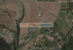 Działka na sprzedaż, Piaski, 7600 m² | Morizon.pl | 9475 nr5