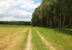 Morizon WP ogłoszenia | Działka na sprzedaż, Zielątkowo, 3000 m² | 7609