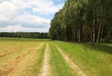 Działka na sprzedaż, Zielątkowo, 3000 m²