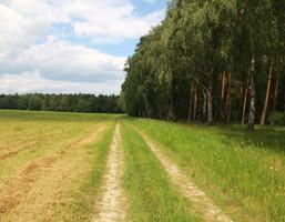 Morizon WP ogłoszenia   Działka na sprzedaż, Zielątkowo, 3000 m²   7609