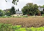 Dom na sprzedaż, Kotusz, 400 m² | Morizon.pl | 3068 nr21