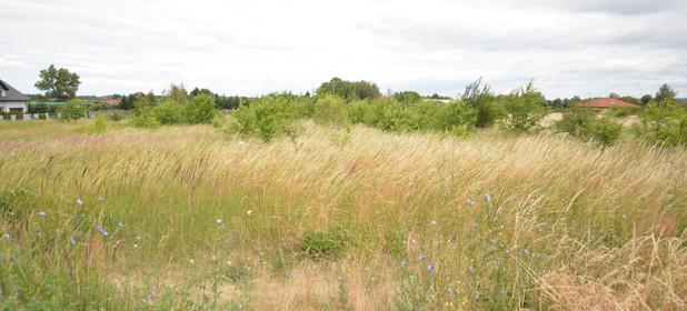 Działka na sprzedaż 3165 m² Policki Dobra (szczecińska) Wąwelnica - zdjęcie 1