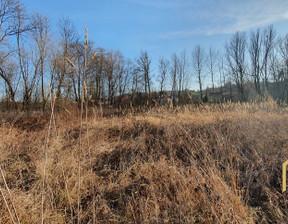 Działka na sprzedaż, Chmielnik, 4300 m²