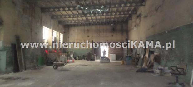 Magazyn, hala do wynajęcia 227 m² Bielsko-Biała M. Bielsko-Biała Centrum - zdjęcie 1