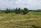Morizon WP ogłoszenia | Działka na sprzedaż, Wola Worowska, 15600 m² | 1086