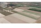 Morizon WP ogłoszenia | Działka na sprzedaż, Podkampinos, 3119 m² | 2696