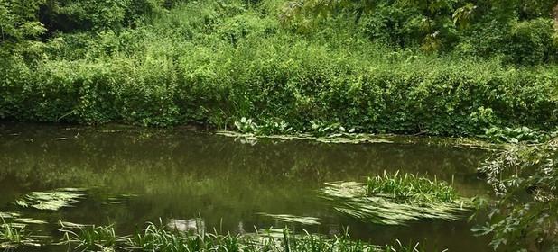 Działka na sprzedaż 3344 m² Piaseczyński Konstancin-Jeziorna - zdjęcie 1