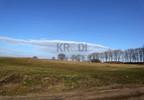 Działka na sprzedaż, Parnowo, 1232 m² | Morizon.pl | 3781 nr7