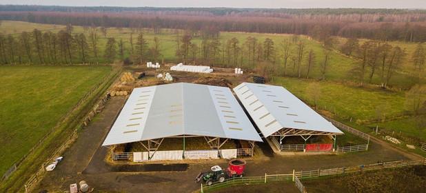 Działka na sprzedaż 807365 m² Namysłowski Domaszowice Wielołęka - zdjęcie 3