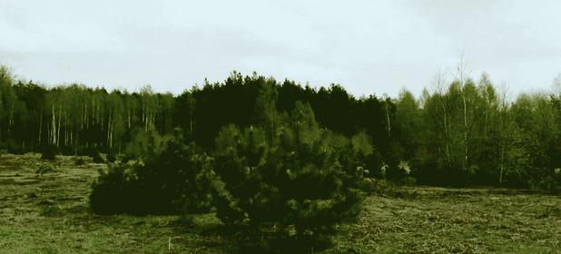 Działka na sprzedaż 10500 m² Łódź Widzew Widzew-Wschód Zielona Góra ul. Okrężna ul. Jagodowa - zdjęcie 3
