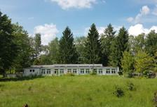 Działka na sprzedaż, Borowa Góra Lipowa, 11069 m²