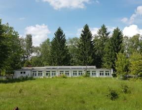Działka na sprzedaż, Borowa Góra Lipowa, 3321 m²