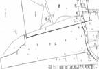 Działka na sprzedaż, Ciemno-Gnojna, 44270 m² | Morizon.pl | 2240 nr9