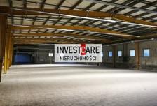 Magazyn, hala do wynajęcia, Dąbrowa Górnicza, 980 m²