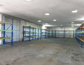 Magazyn, hala na sprzedaż, Nekla, 1350 m²
