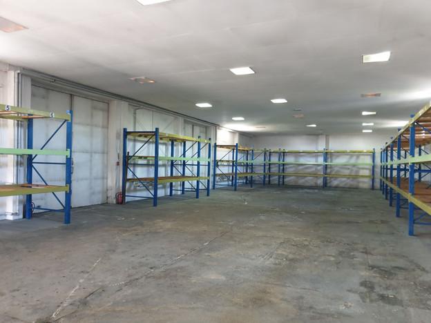 Magazyn, hala na sprzedaż, Nekla, 1350 m²   Morizon.pl   6114