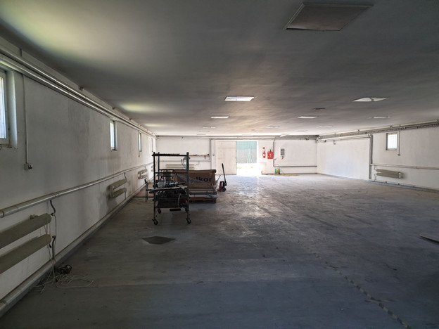 Magazyn, hala do wynajęcia, Nekla, 380 m²   Morizon.pl   6169