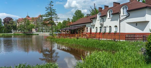 Komercyjna na sprzedaż 300 m² Opolski Niemodlin Restauracja Blisko Zamku - zdjęcie 1