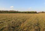 Działka na sprzedaż, Woźniki, 10670 m² | Morizon.pl | 0771 nr4