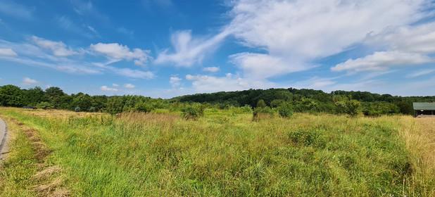 Działka na sprzedaż 3400 m² Rzeszowski Tyczyn Hermanowa - zdjęcie 2