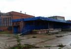 Hala na sprzedaż, Czerniewice Choceńska, 15834 m² | Morizon.pl | 3730 nr8