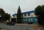 Biuro na sprzedaż, Biskupiec Niepodległości, 483 m²   Morizon.pl   1151 nr3