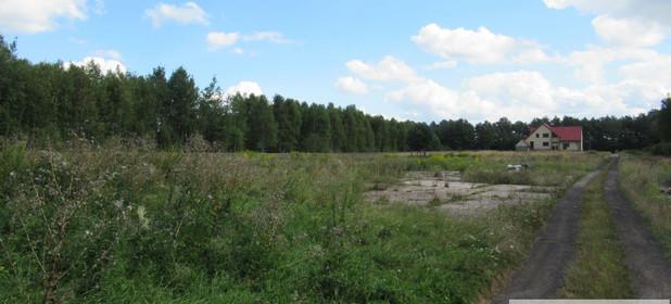 Działka na sprzedaż 4500 m² Myszkowski (Pow.) Koziegłowy (Gm.) Winowno Winowno - zdjęcie 3