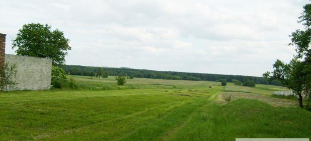 Działka na sprzedaż 10654 m² Myszkowski (Pow.) Koziegłowy (Gm.) Winowno - zdjęcie 3