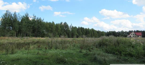 Działka na sprzedaż 4500 m² Myszkowski (Pow.) Koziegłowy (Gm.) Winowno Winowno - zdjęcie 2