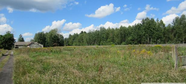 Działka na sprzedaż 4500 m² Myszkowski (Pow.) Koziegłowy (Gm.) Winowno Winowno - zdjęcie 1