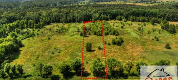 Działka na sprzedaż 5553 m² Będziński (Pow.) Siewierz (Gm.) Warężyn Kuźnica Podleśna - zdjęcie 3