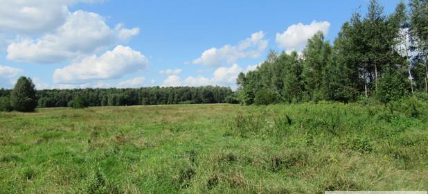 Działka na sprzedaż 5970 m² Myszkowski (Pow.) Koziegłowy (Gm.) Winowno Winowno - zdjęcie 1